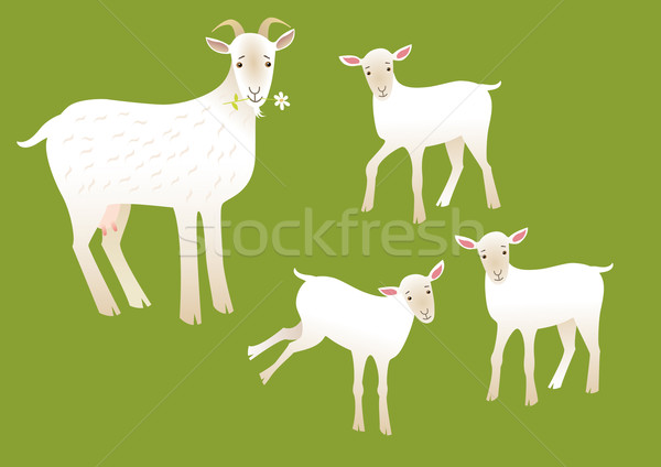 Stock photo: Goats