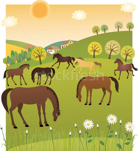 Primavera cavalos flor casa grama beleza Foto stock © MyosotisRock