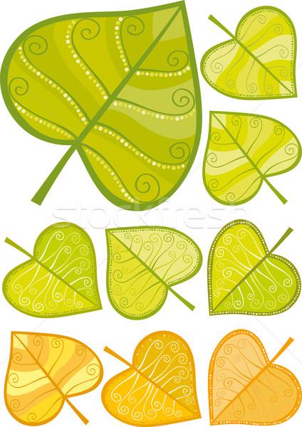 Leaf Stock photo © MyosotisRock