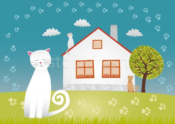Cats house Stock photo © MyosotisRock