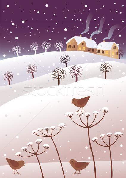 Winter and birds Stock photo © MyosotisRock