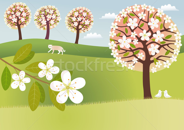 Blossom countryside Stock photo © MyosotisRock