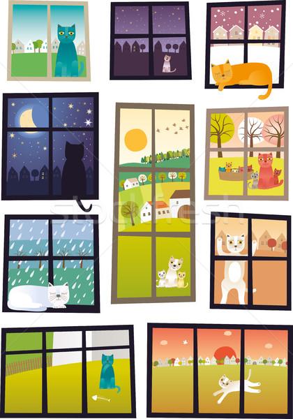 Stock photo: Cat in every window