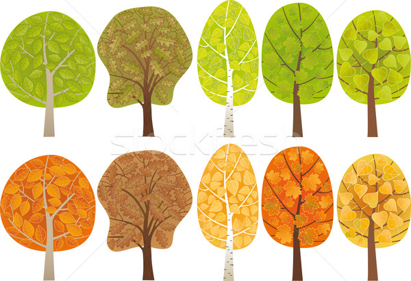 Set of leafy trees Stock photo © MyosotisRock
