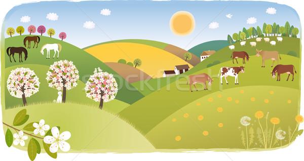 Spring highland Stock photo © MyosotisRock