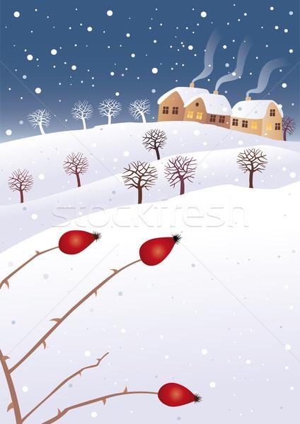 Winter and rosehip Stock photo © MyosotisRock