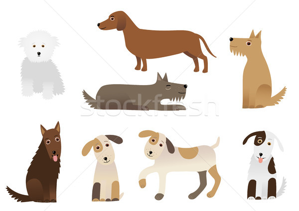 Stock photo: Dogs