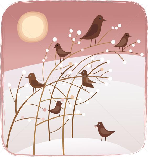 Birds and berries Stock photo © MyosotisRock