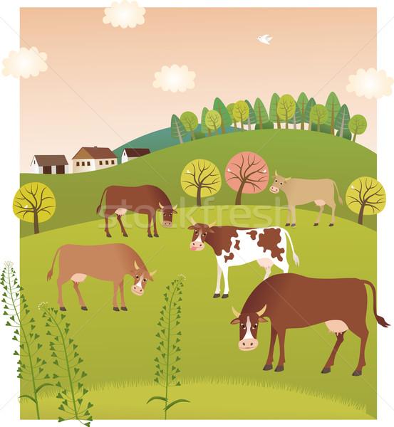 Tavasz tehenek ház fű erdő szépség Stock fotó © MyosotisRock