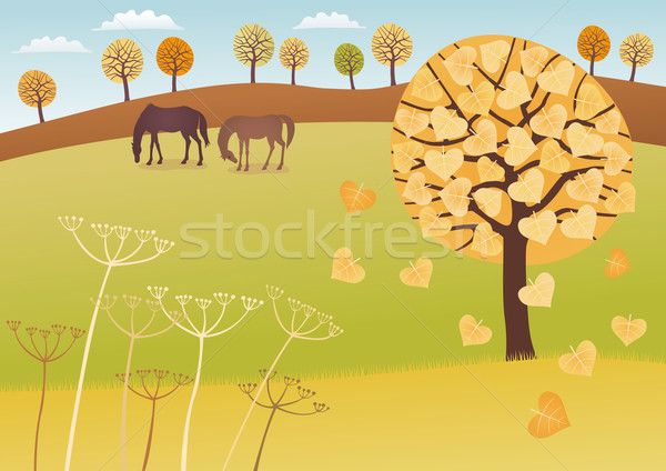 Fall countryside Stock photo © MyosotisRock