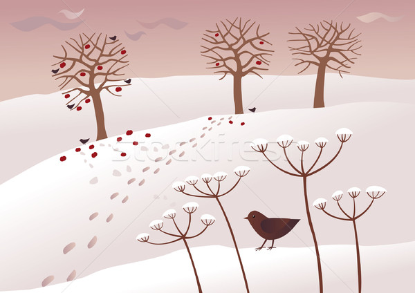 Сток-фото: зима · день · птиц · продовольствие · банка