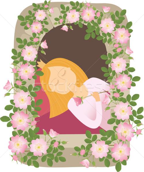 Adormecido beleza princesa fadas cauda menina Foto stock © MyosotisRock