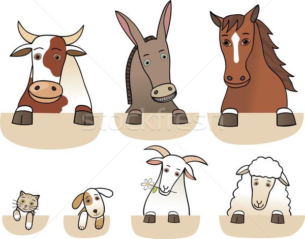 Set of farm animals torsos isolated Stock photo © MyosotisRock