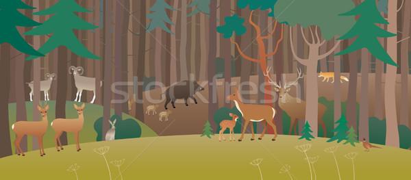 Forest full of animals Stock photo © MyosotisRock