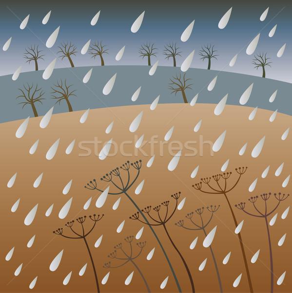 Chuva outono cair cair agricultura prado Foto stock © MyosotisRock