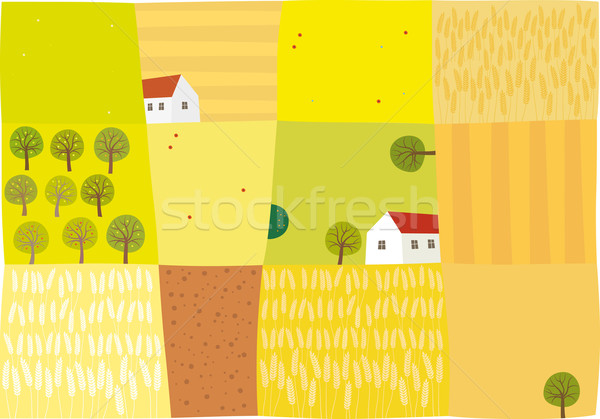 Stock photo: Fields to harvest