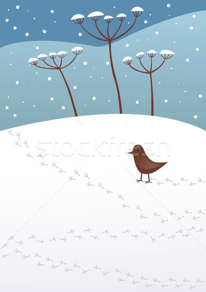 Inverno céu pássaro azul planta frio Foto stock © MyosotisRock