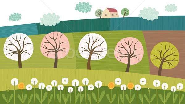 Trees and fields Stock photo © MyosotisRock