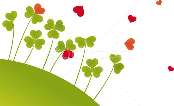 Stock photo: Oxalis Hearts