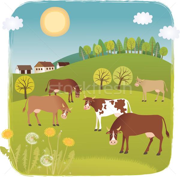 Vacas céu flor casa grama feliz Foto stock © MyosotisRock