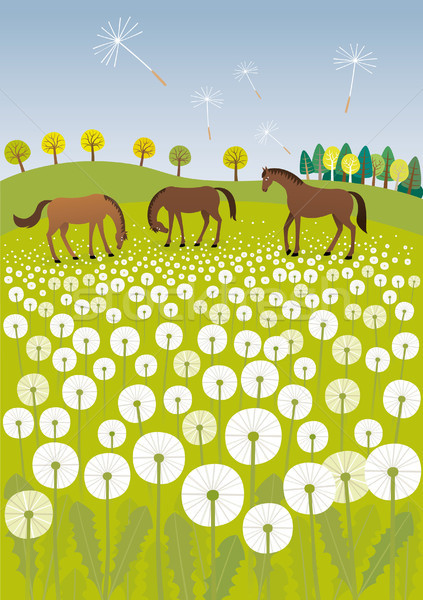 Stock photo: Dandelions and horses