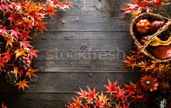 Autumn leaves on wood. Red autumn Stock photo © mythja