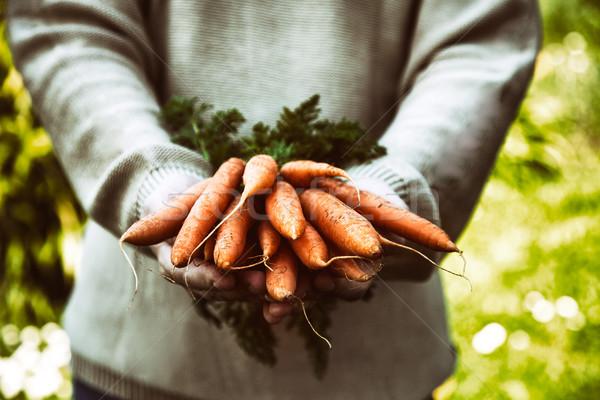 新鮮な 人参 農民 手 オーガニック 野菜 ストックフォト © mythja