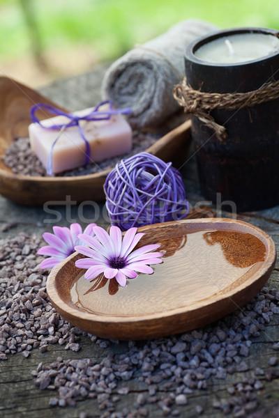 Violeta natureza conjunto estância termal bem-estar naturalismo Foto stock © mythja
