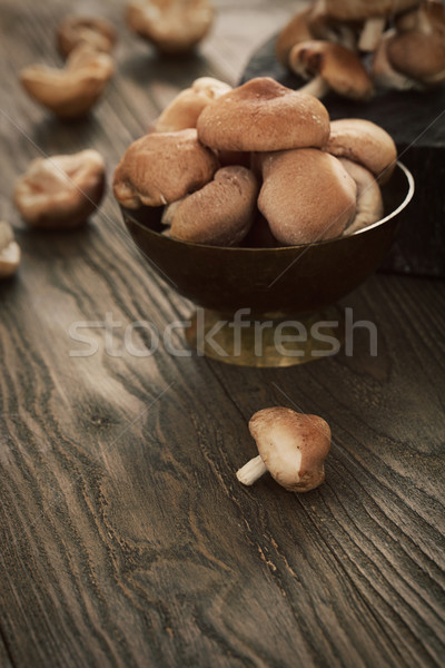 Shiitake mushrooms Stock photo © mythja