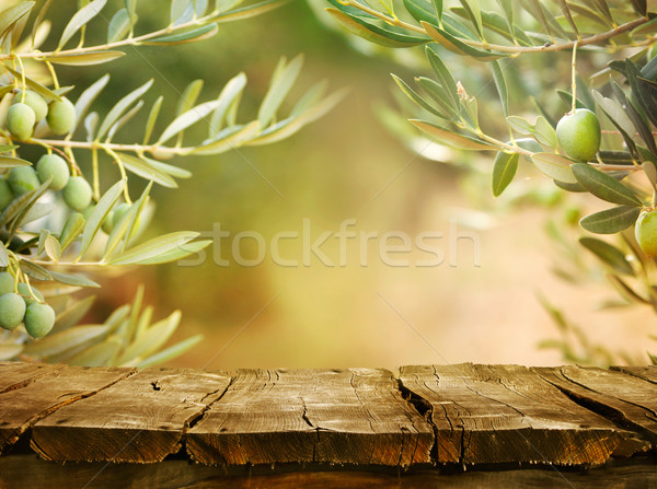 Olive trees with tabletop Stock photo © mythja