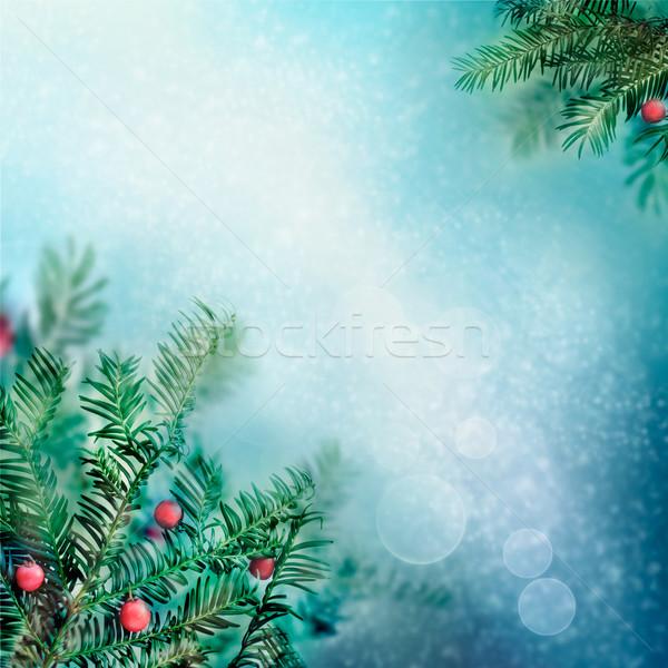 国境 冬 自然 表示 凍結 森林 ストックフォト © mythja