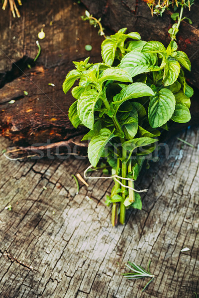 Fresh herbs on wood Stock photo © mythja