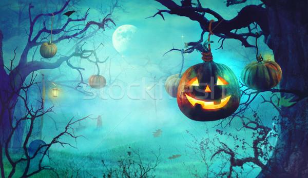 Foto d'archivio: Halloween · zucche · buio · foresta · scary