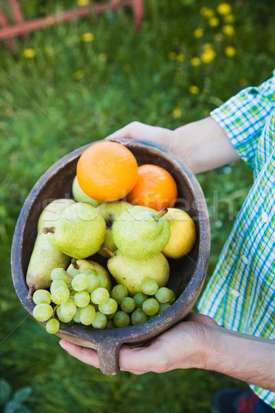 新鮮果物 手 農家 ボウル 果物 フルーツ ストックフォト © mythja
