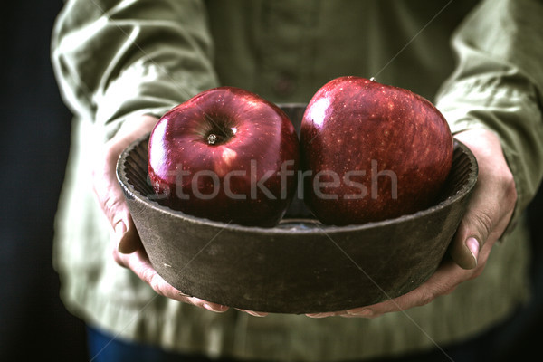 Agriculteur pommes organique fruits mains Photo stock © mythja