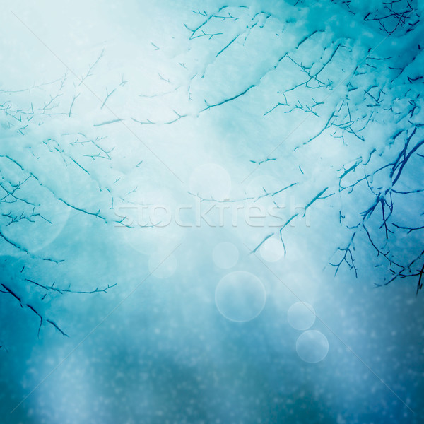 Border winter nature background Stock photo © mythja