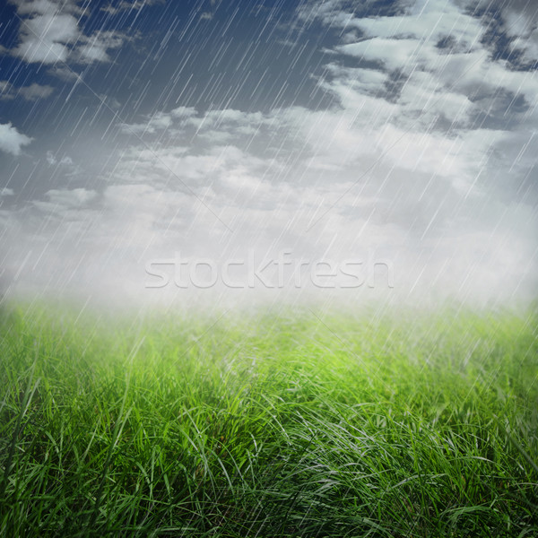 Spring rainy background Stock photo © mythja