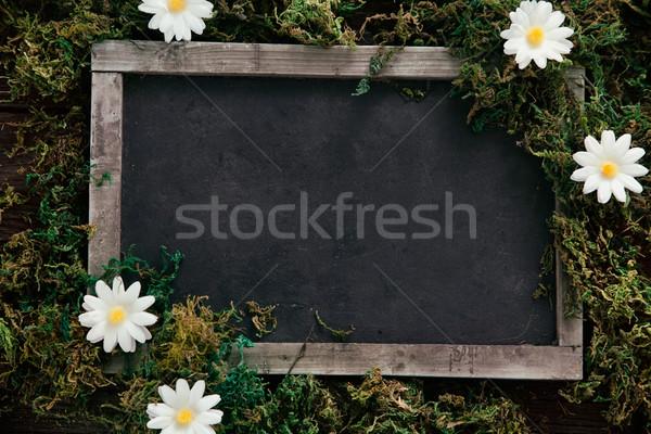 Primavera pizarra Daisy flores madera Pascua Foto stock © mythja