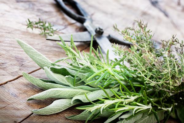 Stock fotó: Frissen · gyógynövények · öreg · antik · olló · fa
