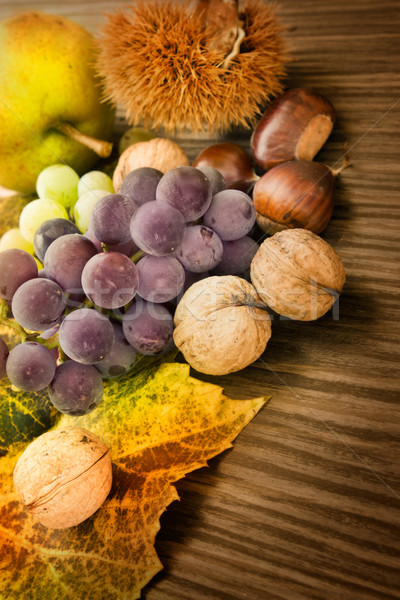 Set of autumn fruit Stock photo © mythja