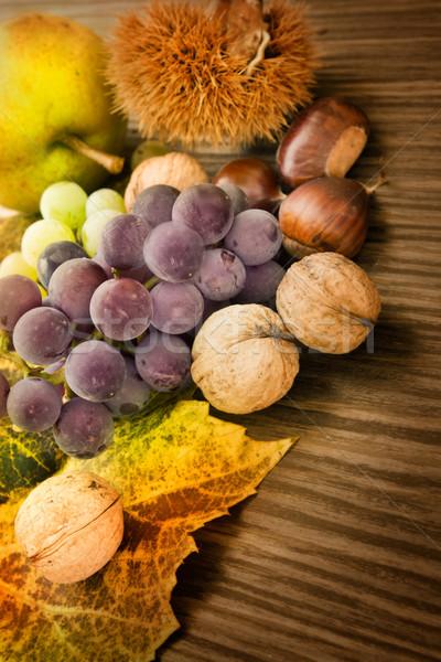 Szett ősz gyümölcs természet gyönyörű napfény Stock fotó © mythja