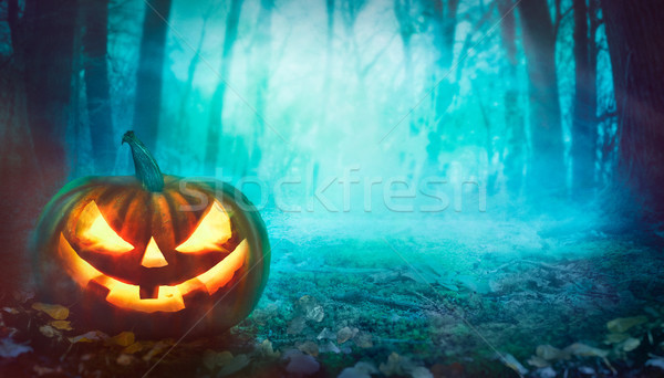Halloween pumpkin in forest Stock photo © mythja
