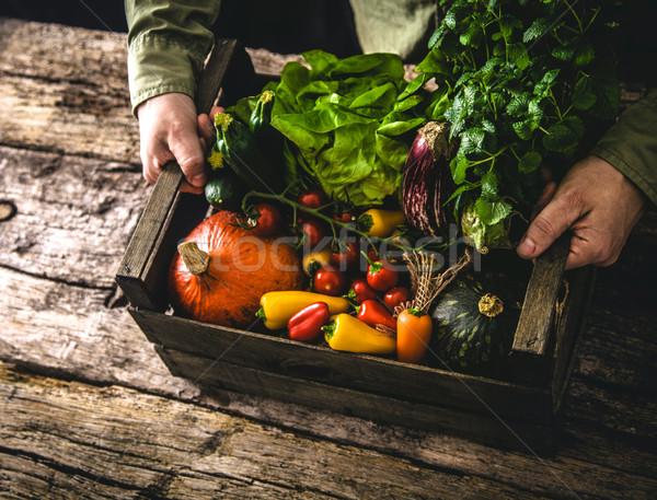 Organikus zöldségek fa gazda tart rusztikus Stock fotó © mythja