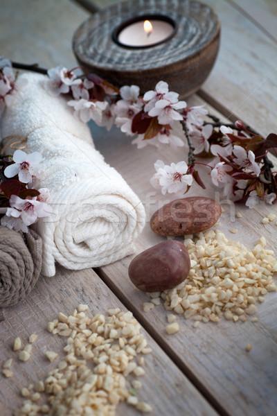 Natural spa setting Stock photo © mythja