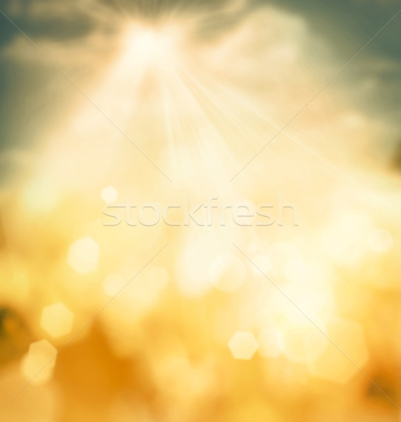 Spring bokeh background Photo stock © mythja