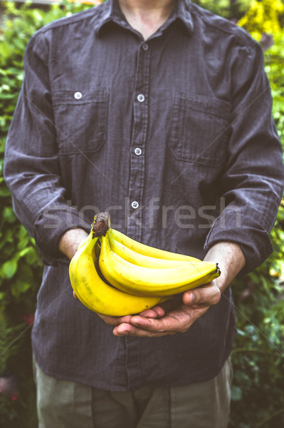 Agriculteur bananes organique fruits mains Photo stock © mythja