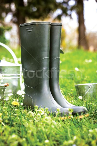 Stock fotó: Tavasz · kert · előkészítés · víz · konzerv · cseresznye