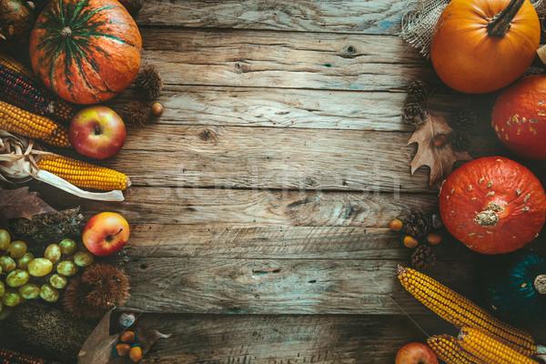 Autumn fruitsetting Stock photo © mythja