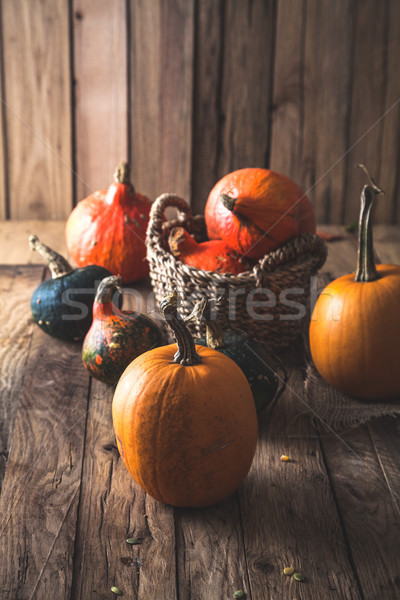 Pumpkins Variety On Table Thanksgiving Decoration Stock