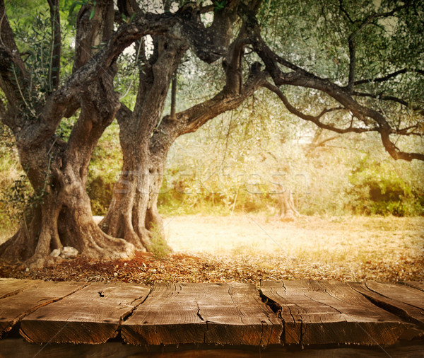 Olijfboom tabel houten tafel hout lege montage Stockfoto © mythja